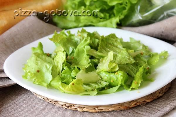 Листья салата Ромэн